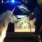 Police Chase Escaped 'Unicorn'